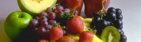 Stepelfsteden & voeding